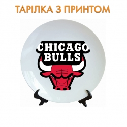 Тарелок Chicago Bulls logo