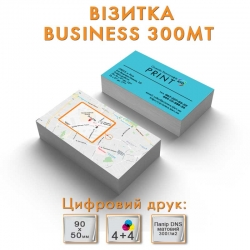 Визитка Business 300MT