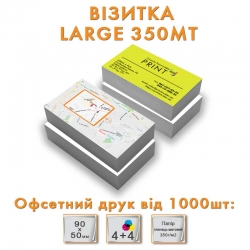 Business card Large 350MT