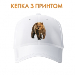 Кепка Bear walks