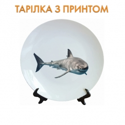 Тарелок Shark with sharp teeth