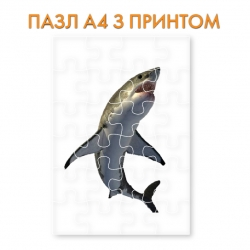 Пазл Shark with white belly