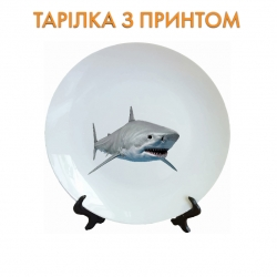 Тарелок White head of shark