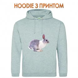 Худи с принтом Grey and whire rabbit jumps серый