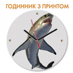 Часы Shark with white belly