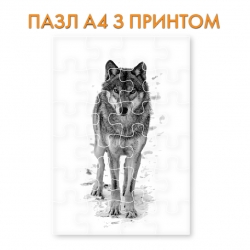 Пазл Black and white wolf