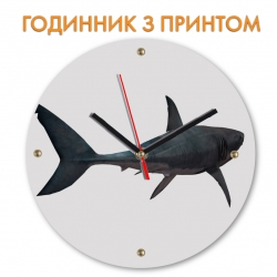 Часы Shark with tale