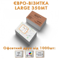 Euro Business Card Large 350MT