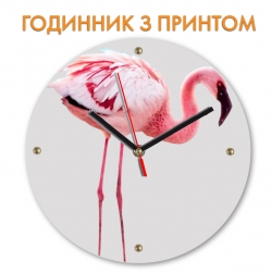 Часы Flamingo with violet nose