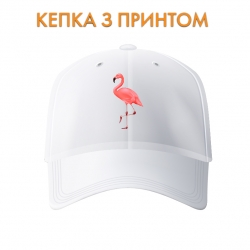 Кепка Art of flamingo