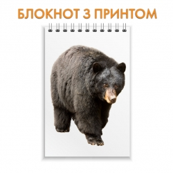 Блокнот Dark brown bear walks