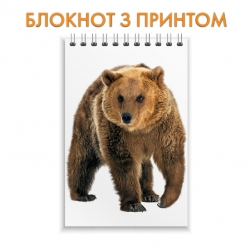 Блокнот Bear walks