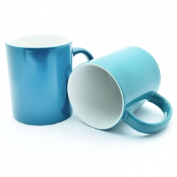 Turquoise Chameleon Cup